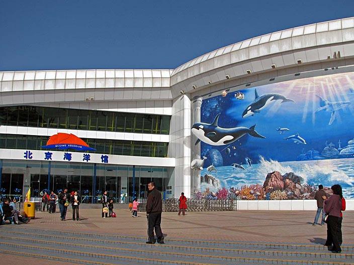 Аквариум в Пекине