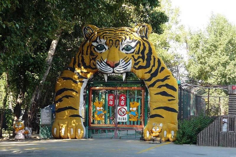 Парк Сибирских Тигров